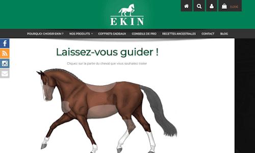 Ek1n.fr
