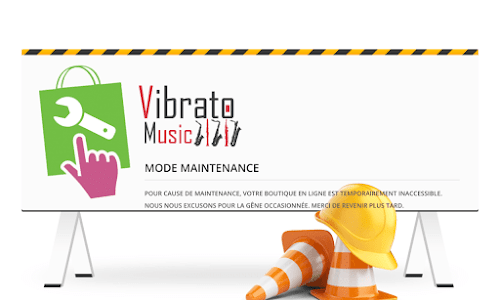 VibratoMusic, Acheter en ligne un instrument de musique Musique