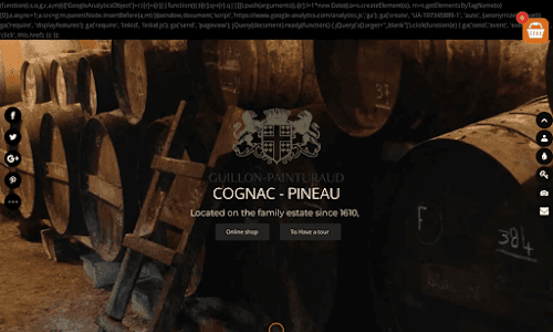 Cognac Guillon Painturaud