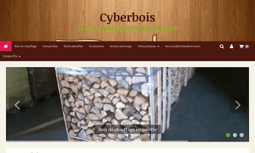Cyberbois
